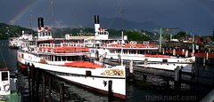 Paddle steamers - -Switzerland